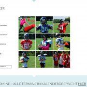 webdesign wordpress aschaffenburg jochen hilmer designer schule gymnasium dalberg